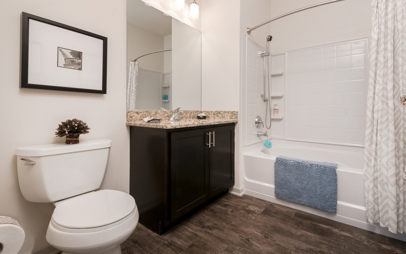 Large well lit bathroom with wood floors and dark wood cabinets